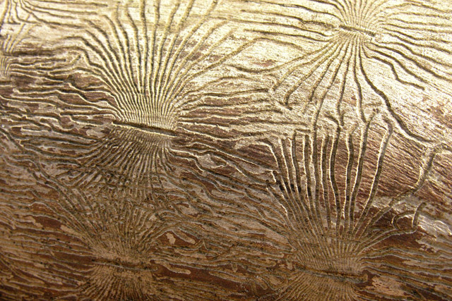 bark beetle engravings